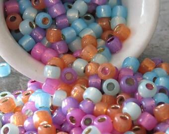 Toho 6/0 Silver Lined Mix - Aqua, Mauve, Peridot, Amethyst, Grapefruit : 20 Grams