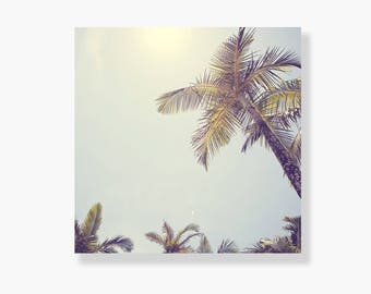 Palm tree photo canvas wall art, coastal decor, tropical decor, coastal wall art, palm tree canvas art - This is my Happy Place