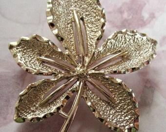 ON SALE- vintage gold tone leaf brooch - Sarah Coventry #j4077