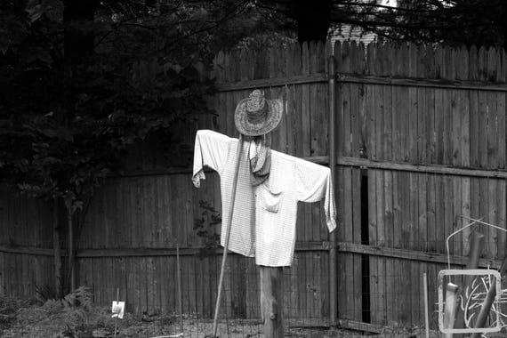 """Scarecrow,"" Lewis Oliver Farm, Northport, New York, 2016."