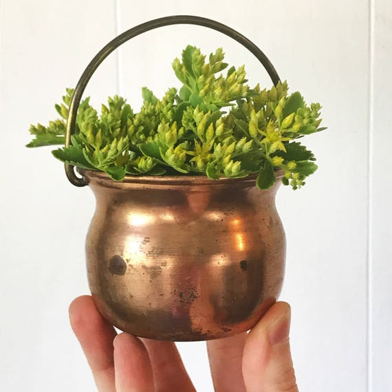 vintage copper pot with brass handle - mini metal planter - french farmhouse boho