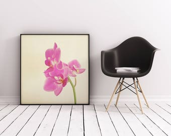 Orchid Art print, Minimal Floral Wall Art - Pink Orchid