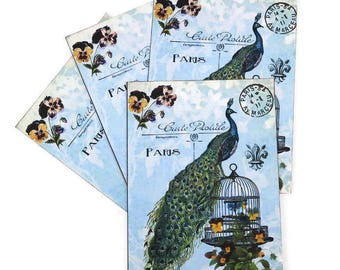 Peacock Paris Notecards -Blank Note Cards -Birdcage -Pansy -French Paris Postcards -Postale Carte- Nature Lover- Tea Party - Bridal Shower