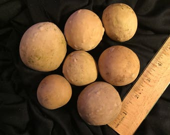 7 Little Ball Gourds With Bumps