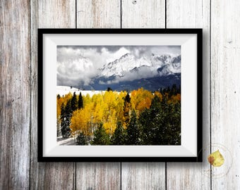 Colorado Art Pikes Peak Americas Mountain Fall Photo Snow Aspen Pine Trees