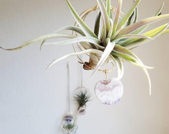 Hanging Planter, Air Plant Nest With Amethyst Slice Heart, Airplant Hanger, Crystal Air Plant Holder, Gardening Gift