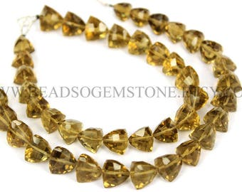 Gemstone Beads, Beer Quartz Faceted Trillion (Quality AA+) / 8 to 10 mm / 18 cm / BE-007