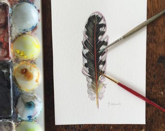 Original watercolour feather - red shafted flicker feather