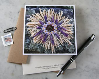 Potato Bloom Explosion Mandala ~ One 5x5 Square Note Card (with envelope, blank inside, no message)