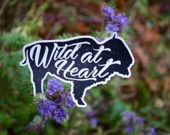 Wild at heart, adventure vinyl decal bumper sticker
