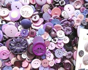 Purple Buttons, Vintage Lot of 800