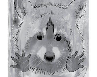 12x16 Inch Print - Racoon Grey