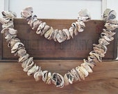 Oyster Shell Garland, Nautical Decor