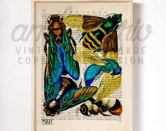 Intricate E.A. Séguy Bright Beautiful Bee Wings Insect Print on Antique Upcycled Bookpaper Unframed