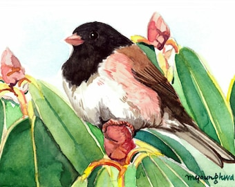 ACEO Limited Edition 1/25- Dark-eyed Junco perching,Junco sparrow on rhododendron, Gift for bird lovers,Miniature painting,Gift idea