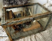 Rusty display case metal w/ glass curiosities showcase French farmhouse distressed box for collectibles home decor anita spero design