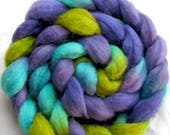 Polwarth and Tussah Silk Hand Painted Fiber (Combed top) 4 oz.