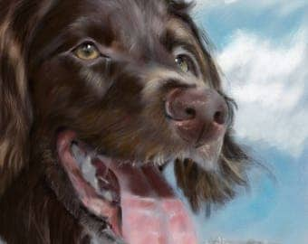 PRINT Boykin Spaniel Dog Face Art Print of painting by Mary Sparrow of Hanging the Moon beach sunny day