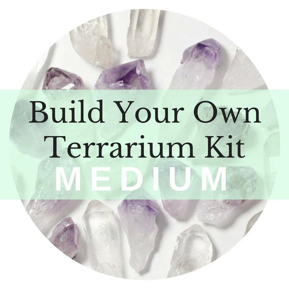 Build Your Own Terrarium || Medium ||  Air Plant + Crystal DIY Kit
