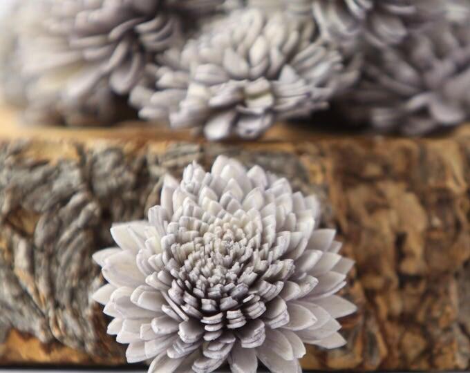 Eggplant Zinnia Sola Flowers - SET OF 10