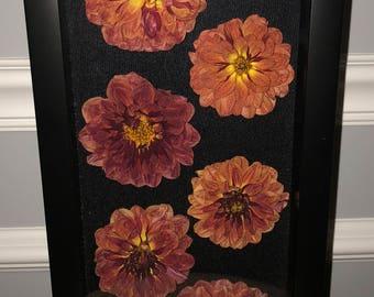 Real Homegrown Dried Dahlia Shadow box