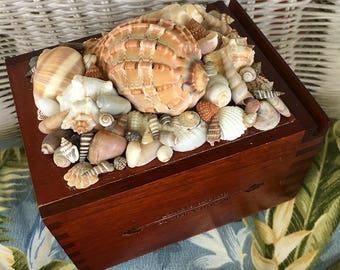 Sea-gar Box with Shell Covered Lid