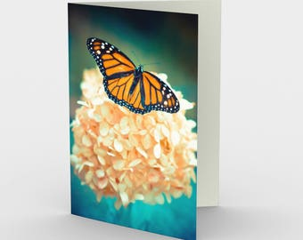 Butterfly Card, Blank Note cards, Nature Note Cards, Greeting Cards, Three Note Cards, 5x7 Cards, Nature Blank Card, All Occasion Cards