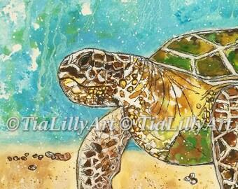 Turtle A3 print