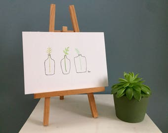 Three Bottled Plants - Watercolour