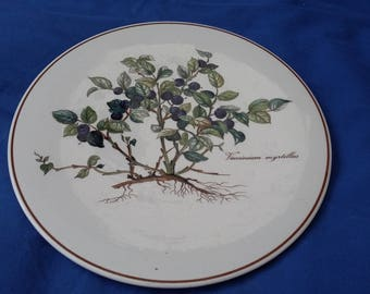 Villeroy and Boch Botanica Teapot Stand Serving Dish Plate