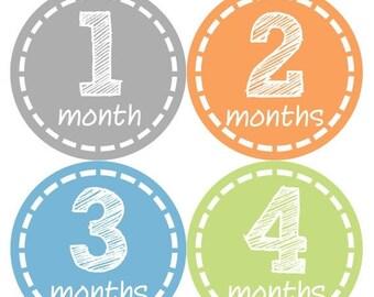 Monthly Baby Milestone Stickers Baby Boy Baby Shower Gift One-Piece Baby Stickers Monthly Baby Stickers Baby Month Sticker 114