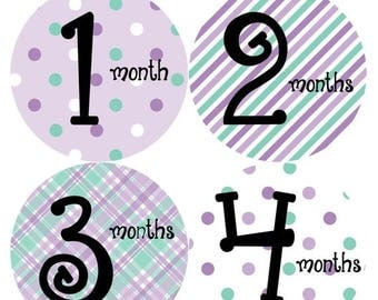 Monthly Baby Stickers Baby Month Stickers Baby Girl Month Stickers Monthly Photo Stickers Monthly Milestone Stickers 001