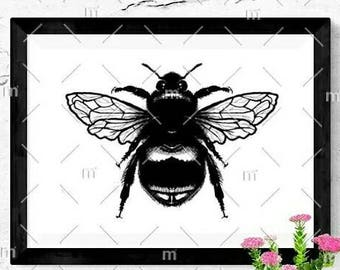 Bumble Bee Black and White Glossy A6 Postcard