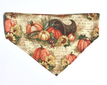 Fall harvest bandana