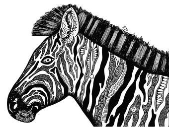 Limited Edition Zebra in Profile Drawing Print- Signed by Kelsey Montague