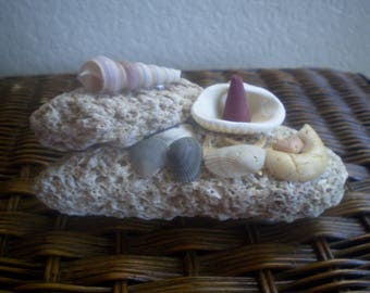 "A ""Peek A Boo"" Starfish Cone Incense Burner"