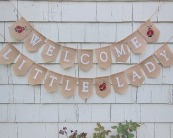 Little Lady Baby Shower, Lady Bug Shower Decorations, Lady Bug Banner,  Little Lady
