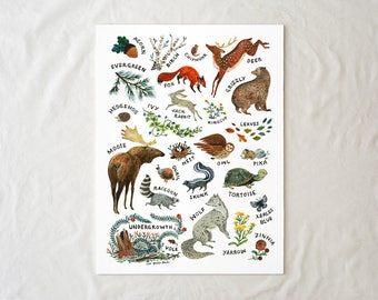 ABC Alphabet Wilderness - 18x24 Art Poster