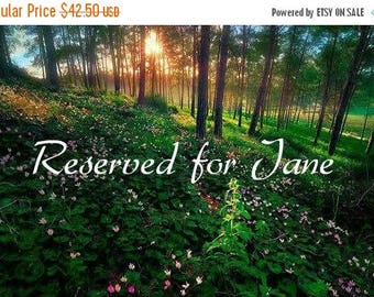 ON SALE Reserved for Jane