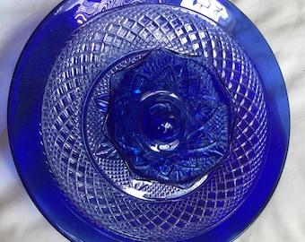 Cobalt Blues Garden Flower