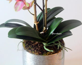 print, photography, orchid, container, greenery, canvas print, photo print