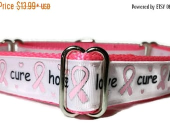 "SALE Hope*Love*Cure* Breast Cancer Nylon Dog Collar * 1"" Width Only * Buckle Collar * Martingale Collar * Chain Martingale"