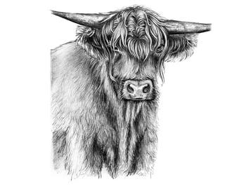 Highland cow - Limited edition print (100 only)