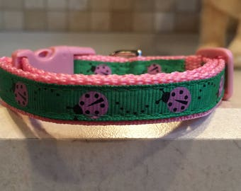 Little Lady Extra Small Dog Collar