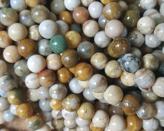 "Natural Ocean Jasper 6mm Round Beads - 15.75""~16"" Strand"