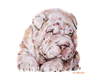 """Shar Pei """" Print Watercolour A3 (30*40cm/16*12 Inches)"""