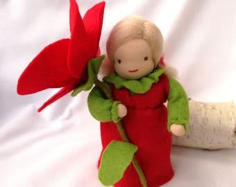 Poppy - flower child