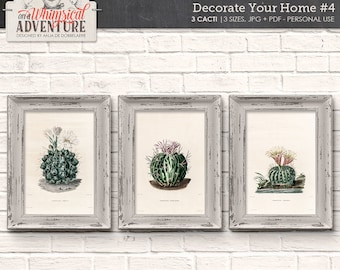 Antique Cactus Illustration, Set Of 3, Printable Vintage Botanical Book Pages, Instant Download Wall Art, Home Decor, Digital Collage Sheet