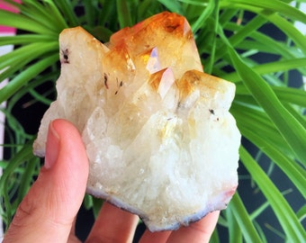 Honey Citrine Crystal infused w/ Reiki, Healing Crystals and Stones