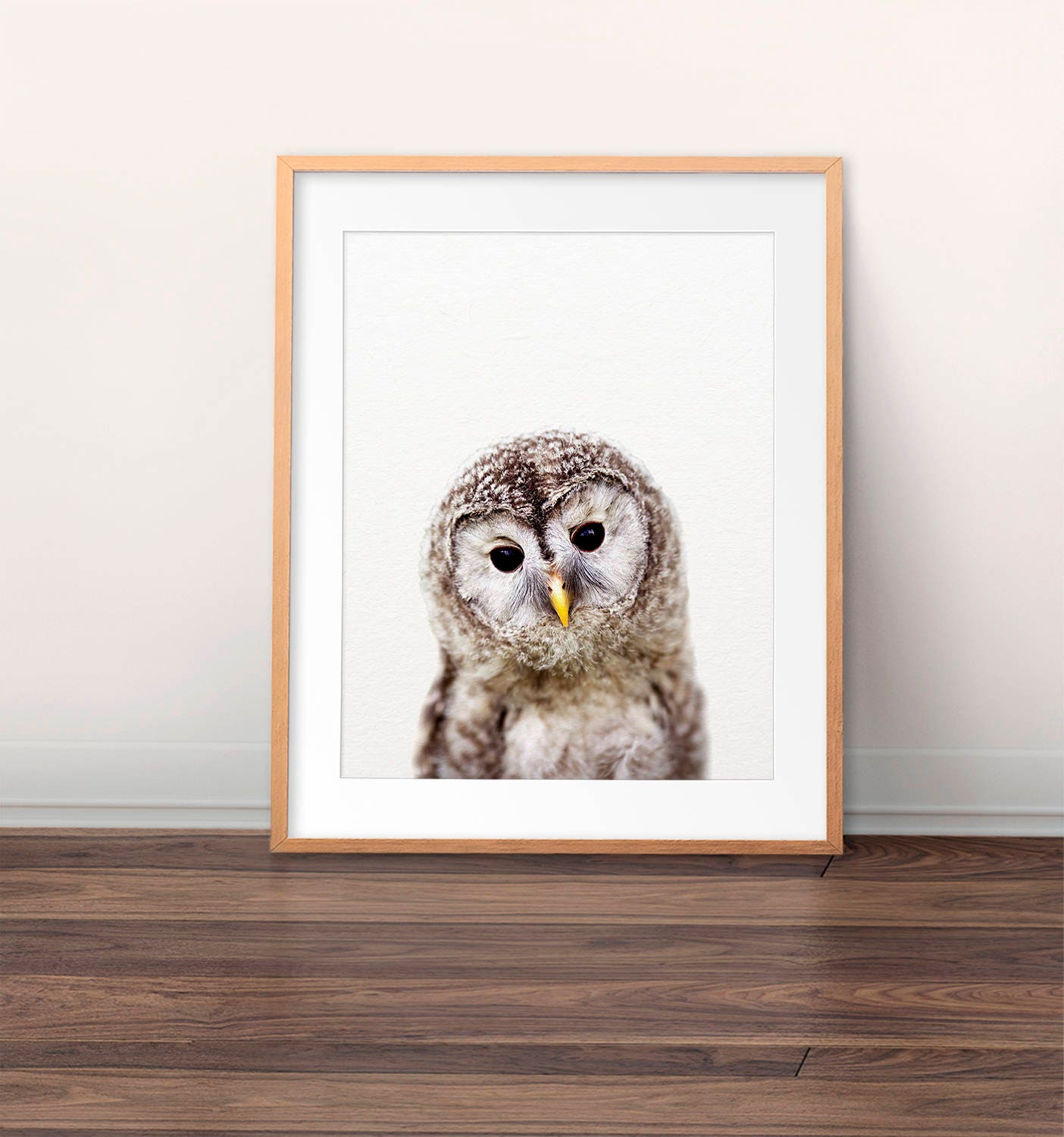 owl print nursery wall art baby owl photo nursery art. Black Bedroom Furniture Sets. Home Design Ideas